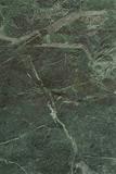 alberti-oliva-25x37