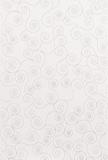grazia-bianco-25x37