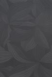 orchidea-nero-25x37